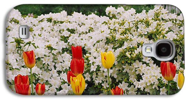 Garden Scene Galaxy S4 Cases - Flowers In A Garden, Sherwood Gardens Galaxy S4 Case by Panoramic Images