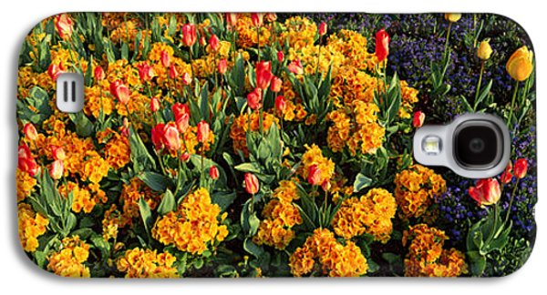 Flowers In Hyde Park, City Galaxy S4 Case by Panoramic Images