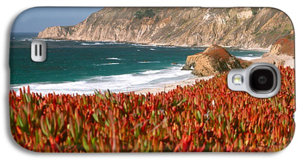 Flowers On The Coast, Big Sur Galaxy S4 Case by Panoramic Images