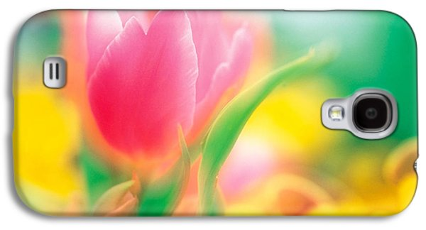 Designs In Nature Galaxy S4 Cases - Flowers Galaxy S4 Case by Panoramic Images