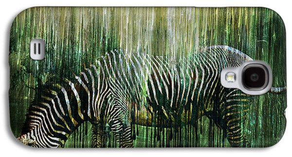 Photo Manipulation Mixed Media Galaxy S4 Cases - Flowing Stripes Galaxy S4 Case by Marian Voicu