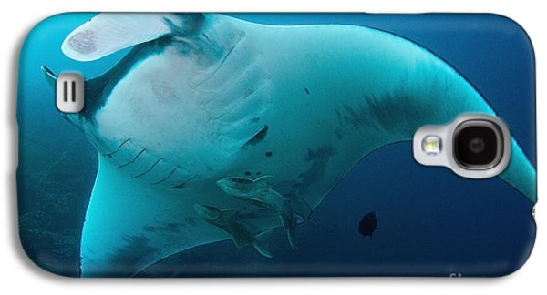 Plankton Galaxy S4 Cases - Fly By Galaxy S4 Case by Aaron Whittemore