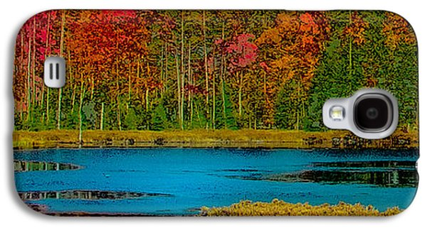 Nature Abstract Galaxy S4 Cases - Fly Pond Abstract Galaxy S4 Case by David Patterson