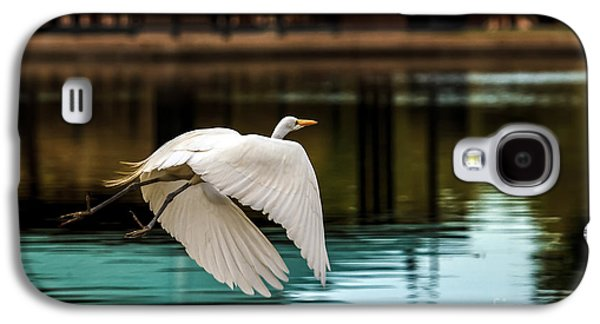 Haybale Galaxy S4 Cases - Flying Egret Galaxy S4 Case by Robert Bales