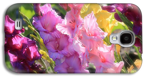 Gladiolas Galaxy S4 Cases - Focus on Summer Sunshine Galaxy S4 Case by Carol Groenen