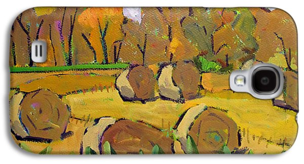 Indiana Winters Galaxy S4 Cases - Fodder Bales Galaxy S4 Case by Charlie Spear
