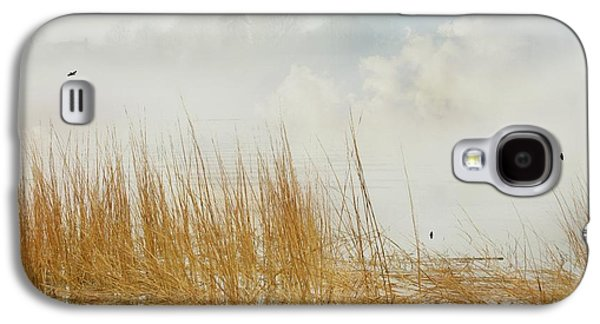 Foggy Beach Galaxy S4 Cases - Fog In the Grass Galaxy S4 Case by Diana Angstadt