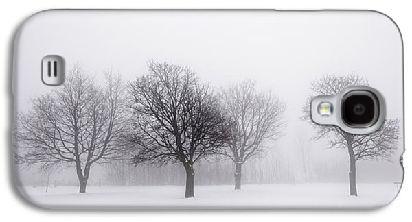 Snow Scene Landscape Galaxy S4 Cases - Foggy park with winter trees Galaxy S4 Case by Elena Elisseeva