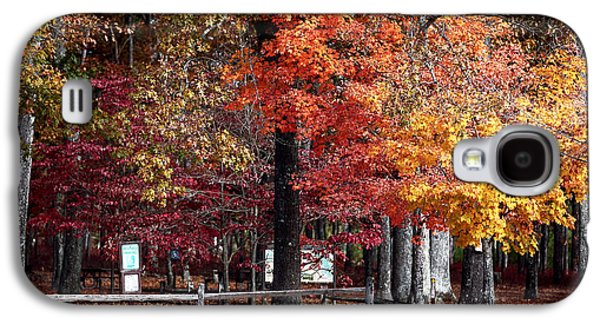 Pine Barrens Galaxy S4 Cases - Foliage Colors Galaxy S4 Case by John Rizzuto