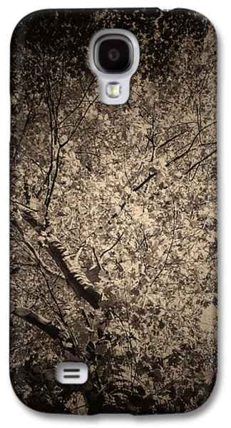 Creepy Galaxy S4 Cases - Foliage Galaxy S4 Case by Wim Lanclus
