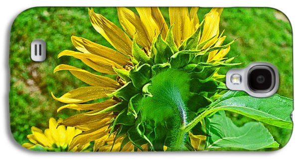 Consumerproduct Galaxy S4 Cases - Sunflower Following the Sun Galaxy S4 Case by George D Gordon III