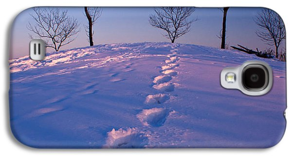 Snow Tree Prints Galaxy S4 Cases - Footsteps Galaxy S4 Case by Cale Best