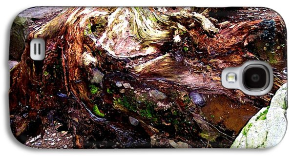 Forest Floor Galaxy S4 Case by Janine Riley