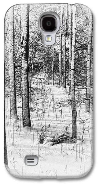Snow Scene Galaxy S4 Cases - Forest in Winter Galaxy S4 Case by Tom Mc Nemar