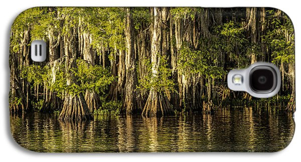 Tamyra Ayles Galaxy S4 Cases - Forest on Caddo Lake Galaxy S4 Case by Tamyra Ayles