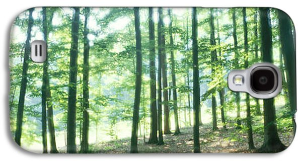 Forest Floor Galaxy S4 Cases - Forest Scene With Fog, Odenwald Galaxy S4 Case by Panoramic Images