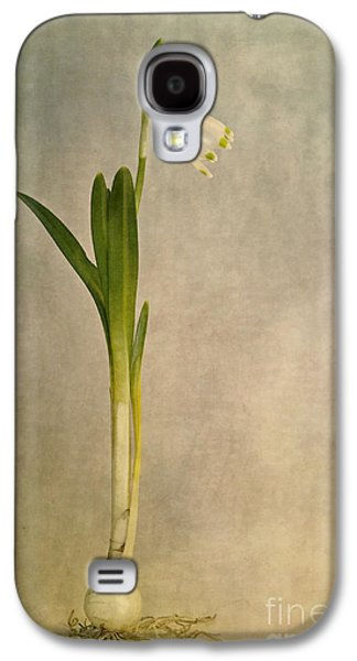 Root Galaxy S4 Cases - Foretaste Of Spring Galaxy S4 Case by Priska Wettstein
