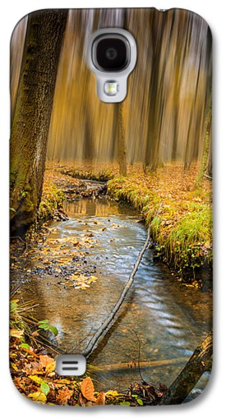 Woodlands Scene Galaxy S4 Cases - Forever Autumn Galaxy S4 Case by Ian Hufton