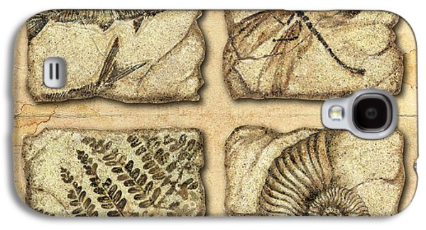 Stones Paintings Galaxy S4 Cases - Fossils Galaxy S4 Case by JQ Licensing