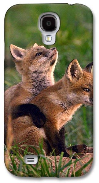 Fox Cub Buddies Galaxy S4 Case by William Jobes