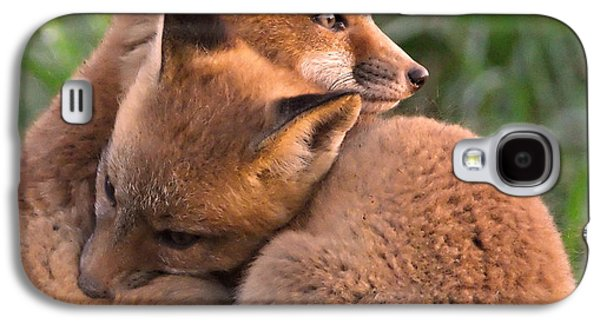 Best Friend Photographs Galaxy S4 Cases - Fox Cubs Cuddle Galaxy S4 Case by William Jobes