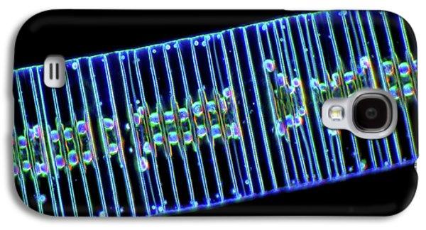 Fragilaria Diatoms Galaxy S4 Case by Marek Mis