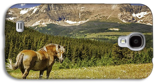 Horse Images Galaxy S4 Cases - Free Roaming Stallion on a Montana Ranch Galaxy S4 Case by Thomas Schoeller