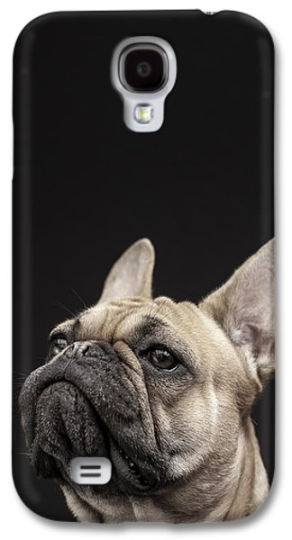 Domesticated Animals Galaxy S4 Cases - Frenchie Galaxy S4 Case by Samuel Whitton