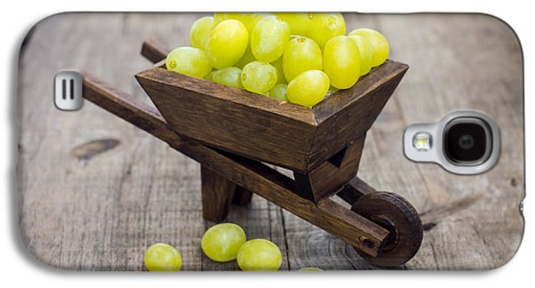 Wine Cart Galaxy S4 Cases - Fresh Green Grapes in a wheelbarrow Galaxy S4 Case by Aged Pixel
