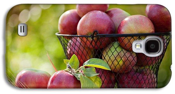 Fresh Picked Apples Galaxy S4 Case by Cindy Singleton