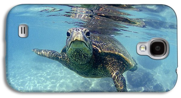 Ocean Art Photography Galaxy S4 Cases - friendly Hawaiian sea turtle  Galaxy S4 Case by Sean Davey