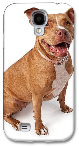 Guard Dog Galaxy S4 Cases - Friendly Pit Bull Galaxy S4 Case by Susan  Schmitz