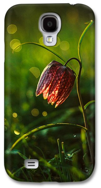Meleagris Galaxy S4 Cases - Fritillaria meleagris Galaxy S4 Case by Davorin Mance