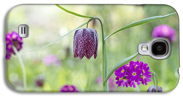 Meleagris Photographs Galaxy S4 Cases - Fritillary and Primula  Galaxy S4 Case by Tim Gainey