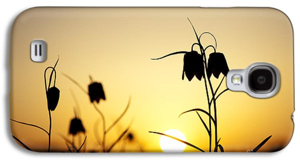 Meleagris Galaxy S4 Cases - Fritillary Flower Sunset Galaxy S4 Case by Tim Gainey