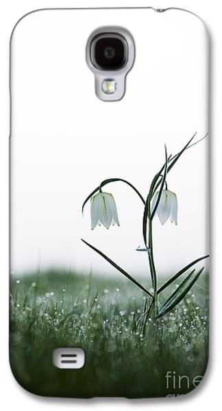 Meleagris Photographs Galaxy S4 Cases - Fritillary in the Mist Galaxy S4 Case by Tim Gainey
