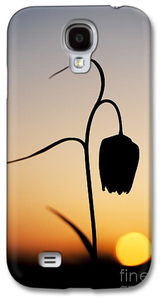 Meleagris Photographs Galaxy S4 Cases - Fritillary Sunset Galaxy S4 Case by Tim Gainey