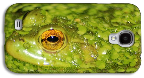 Invertebrates Mixed Media Galaxy S4 Cases - Frog in single celled algae Galaxy S4 Case by Optical Playground By MP Ray