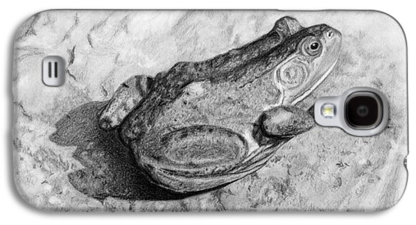 Drawing Galaxy S4 Cases - Frog On Rock Galaxy S4 Case by Sarah Batalka