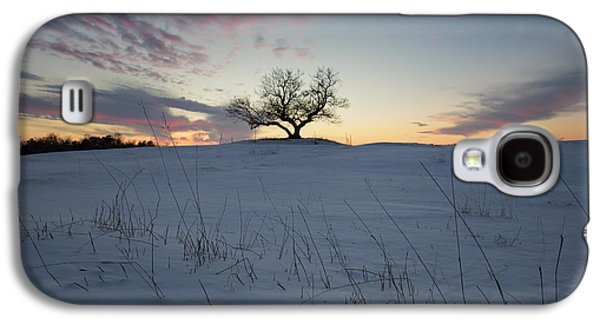 Aperture Photographs Galaxy S4 Cases - Frozen Tree of Wisdom Galaxy S4 Case by Aaron J Groen