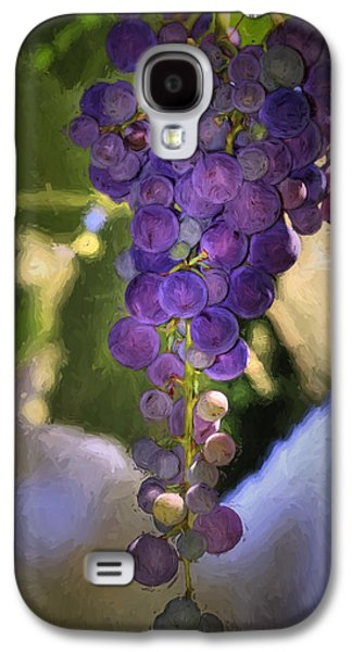 Concord Grapes Galaxy S4 Cases - Fruit of the Vine Galaxy S4 Case by Donna Kennedy