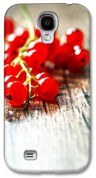 Agronomy Galaxy S4 Cases - Fruits Galaxy S4 Case by Lali Kacharava
