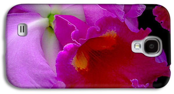 Pinks And Purple Petals Photographs Galaxy S4 Cases - Fuchsia Cattleya Orchid Squared Galaxy S4 Case by Julie Palencia