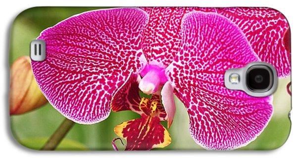 Fuchsia Moth Orchid Galaxy S4 Case by Rona Black