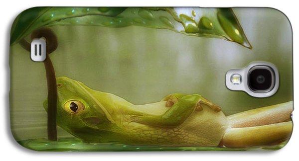 Sun Galaxy S4 Cases - Funny Happy Frog Galaxy S4 Case by Jack Zulli