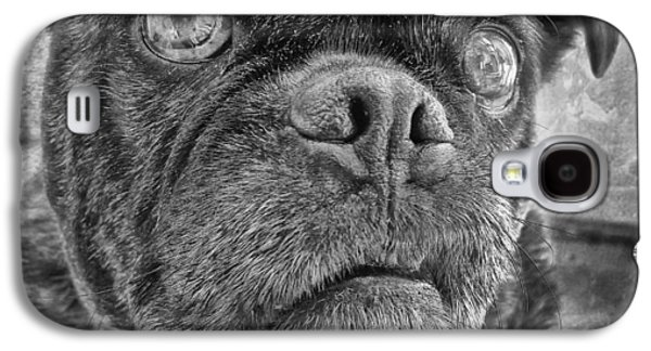 Funny Pug Galaxy S4 Case by Larry Marshall