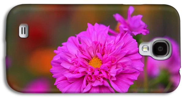 Pinks And Purple Petals Photographs Galaxy S4 Cases - Garden Color Galaxy S4 Case by Rachel Cohen