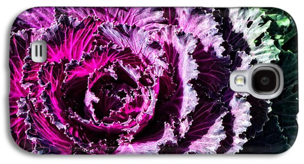 Gardening Photography Galaxy S4 Cases - Garden Haze - Purple Kale Art By Sharon Cummings Galaxy S4 Case by Sharon Cummings