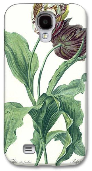 Garden Galaxy S4 Cases - Garden Tulip Galaxy S4 Case by Gerard van Spaendonck