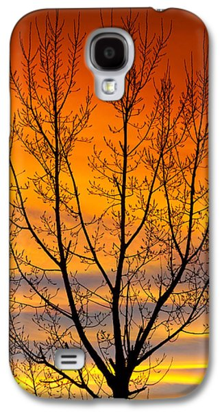 Landscape Acrylic Prints Galaxy S4 Cases - Gavins Sunset 2 Galaxy S4 Case by James BO  Insogna